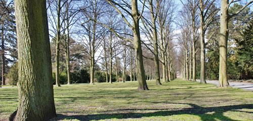 Stadtfriedhof Seelhost