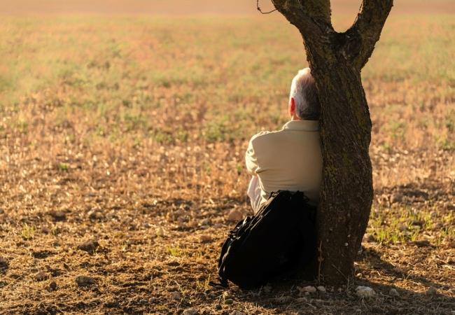 Bestattungsunternehmen und Begräbnisse – sind sie systemrelevant?