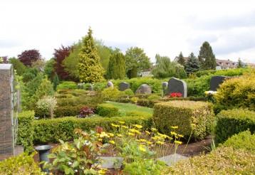 Friedhofsbepflanzungen in Hannover