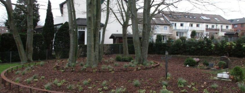 Baumbestattungen als Alternative für herkömmliche Urnengräber in Ronnenberg