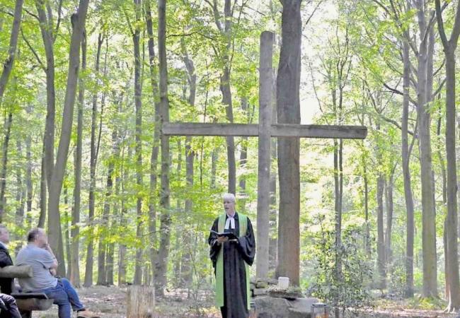 Friedwald-Beerdigung mit Cordes Bestattungen aus Hannover